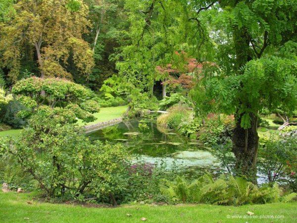 Hazte con un jardín ecológico